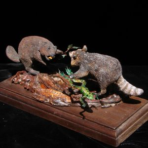 """Builder and Bandit"" - North American: Racoon 10"" x 6"" x 6""H - L/E-99 - Painted Resin"