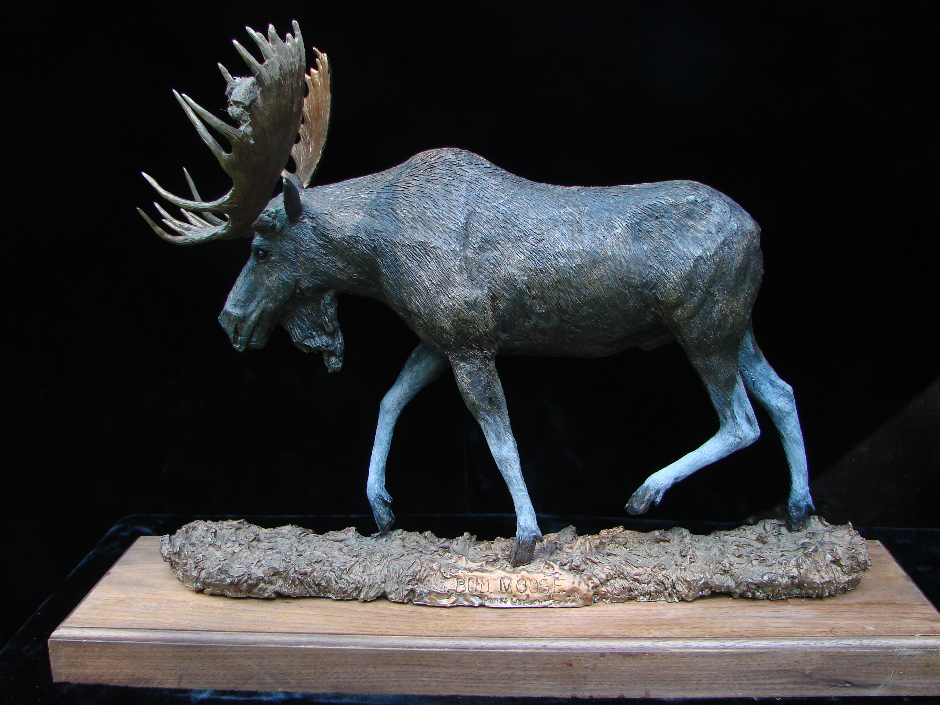 """Bull Moose I"" by Jim Gartin 24"" x 6.5"" x 17""H - L/E 30 - Bronze"