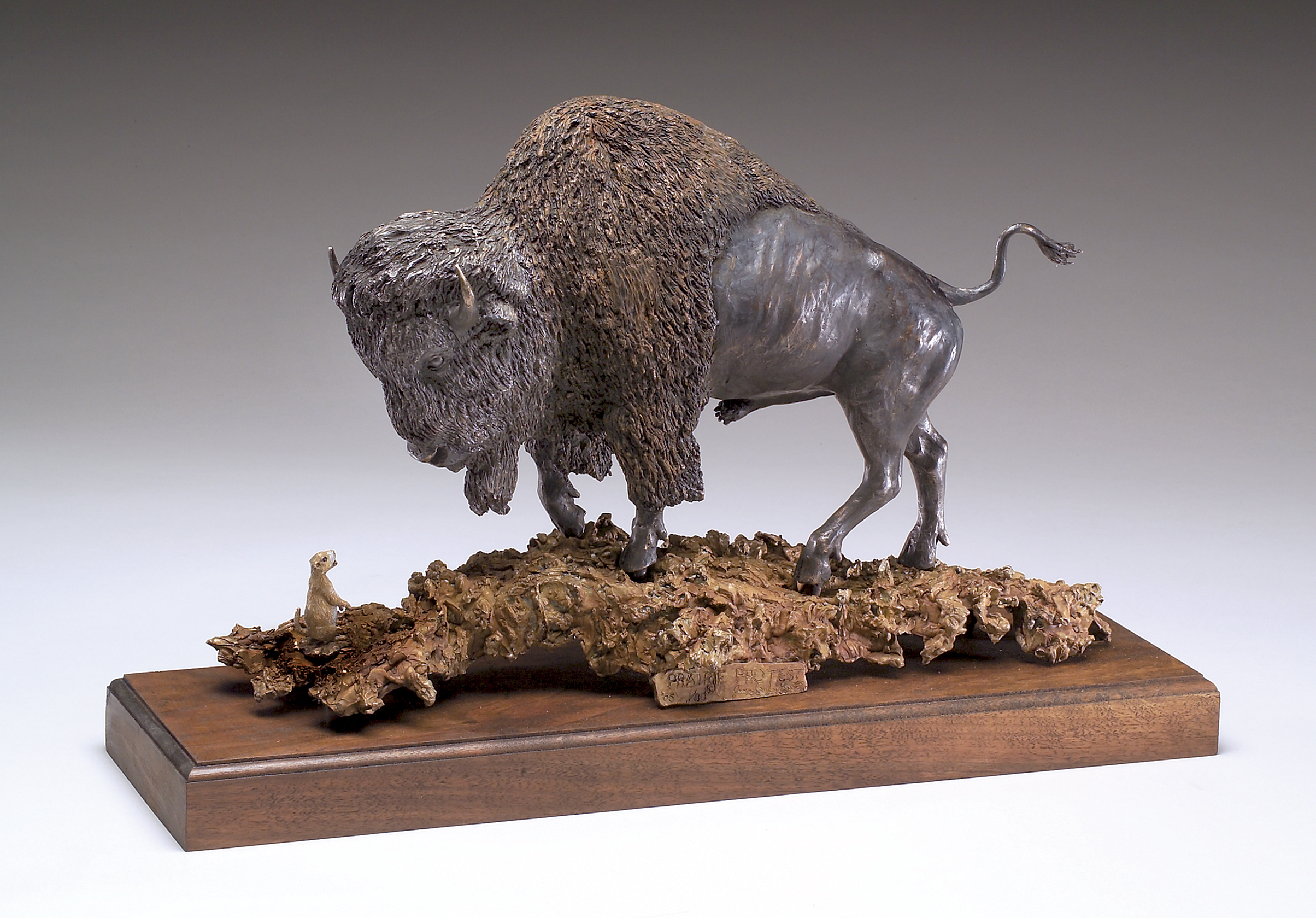 """Prairie Protest"" by James Carlson Gartin 20"" x 6"" x 15""H - 30lbs - L/E -30 - Bronze Buffalo confronted by a Prairie Dog"